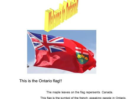 This is the Ontario flag!! The maple leaves on the flag repersents Canada. This flag is the symbol of the french -speaking people in Ontario.
