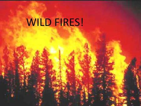 WILD FIRES!. Where to go. If there is a wild fire close by you should evacuate before it gets to your home. Remember to have a smoke detector. =)