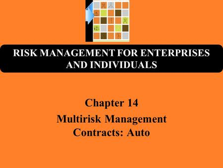 RISK MANAGEMENT FOR ENTERPRISES AND INDIVIDUALS Chapter 14 Multirisk Management Contracts: Auto.