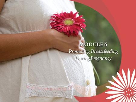 Core Competencies Encourages pregnant women to breastfeed and promotes the food packages available for breastfeeding women and their infants. Assesses.