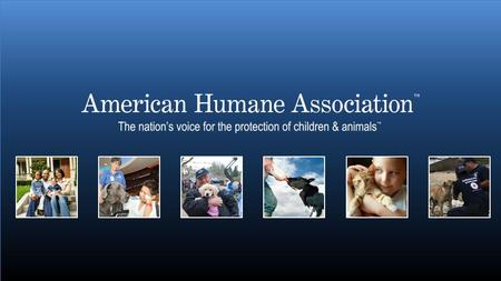 www.americanhumane.org 2 The oldest humane organization 3 Since 1877…. At the forefront of every major advance in the protection of children and animals.