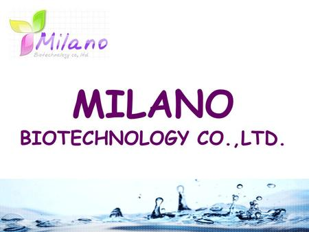 MILANO BIOTECHNOLOGY CO.,LTD.. COMPANY INTRODUCTION Established in 1990 Main export area is Hong Kong Our company is focusing on quality and setting high.