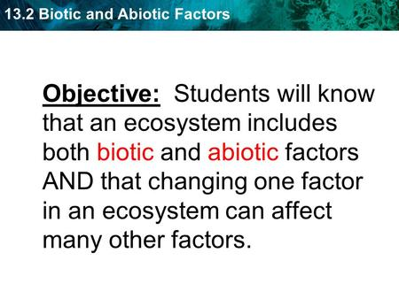 13.2 Biotic and Abiotic Factors Objective: Students will know that an ecosystem includes both biotic and abiotic factors AND that changing one factor in.