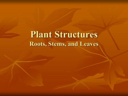 Plant Structures Roots, Stems, and Leaves. What are plants? Photosynthetic,eukaryotic, multi-cellular organisms. Photosynthetic,eukaryotic, multi-cellular.