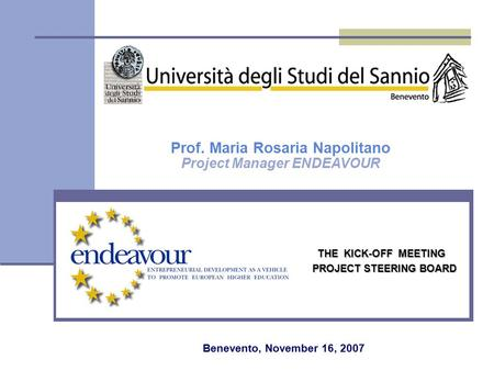 THE KICK-OFF MEETING PROJECT STEERING BOARD Prof. Maria Rosaria Napolitano Project Manager ENDEAVOUR Benevento, November 16, 2007.