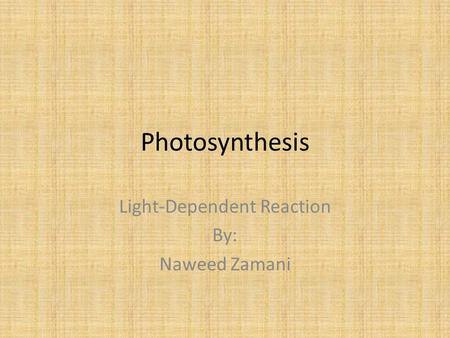 Photosynthesis Light-Dependent Reaction By: Naweed Zamani.