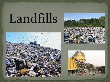 Under knowledge, list in point form 2-3 things that you already know about landfill ecosystems.