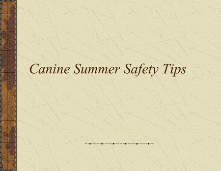 Canine Summer Safety Tips. Hot weather can make anyone feel uncomfortable, and your dog is no exception. Here are some safety concerns for responsible.