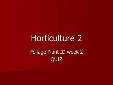 Foliage Plant ID week 2 QUIZ