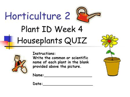 Horticulture 2 Plant ID Week 4 Houseplants QUIZ Instructions: Write the common or scientific name of each plant in the blank provided above the picture.