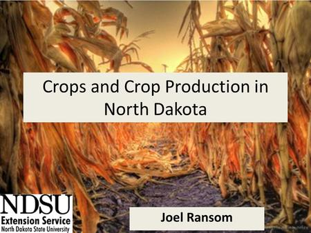 Crops and Crop Production in North Dakota Joel Ransom.