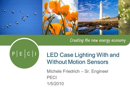 LED Case Lighting With and Without Motion Sensors Michele Friedrich – Sr. Engineer PECI 1/5/2010.