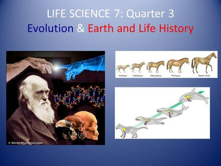 LIFE SCIENCE 7: Quarter 3 Evolution & Earth and Life History.