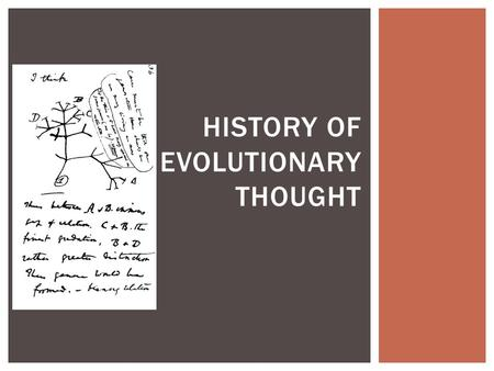 HISTORY OF EVOLUTIONARY THOUGHT. Unit Objective #1 I CAN COMMUNICATE SCIENTIFIC INFORMATION THAT COMMON ANCESTRY AND BIOLOGICAL EVOLUTION ARE SUPPORTED.