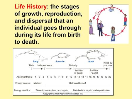 Life History: the stages of growth, reproduction, and dispersal that an individual goes through during its life from birth to death.