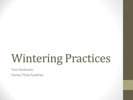 Wintering Practices Tom Pankonen Honey Pimp Apiairies.