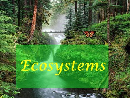 Ecosystems. What do you Know about Ecosystems? Take a moment! Write down or draw everything that you can think of that has to do with ecosystems We are.