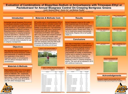 Evaluation of Combinations of Bispyribac-Sodium or Amicarbazone with Trinexapac-Ethyl or Paclobutrazol for Annual Bluegrass Control On Creeping Bentgrass.