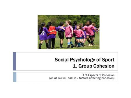 Social Psychology of Sport 1. Group Cohesion