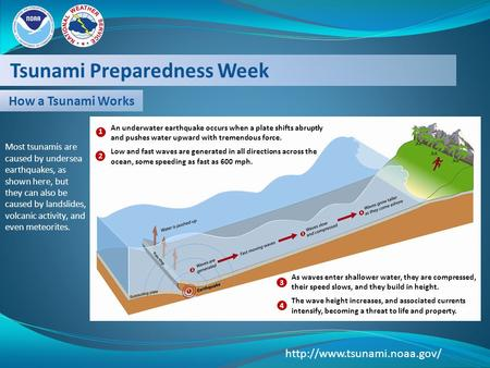 Tsunami Preparedness Week  How a Tsunami Works An underwater earthquake occurs when a plate shifts abruptly and pushes water.