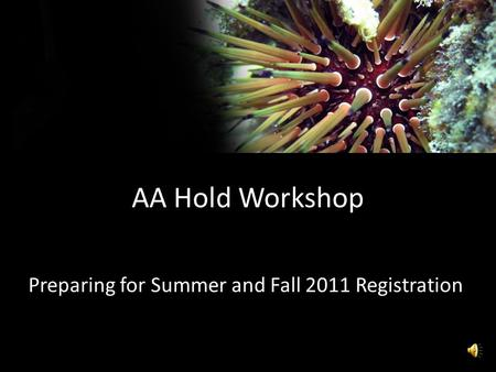 AA Hold Workshop Preparing for Summer and Fall 2011 Registration.