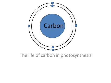 The life of carbon in photosynthesis Carbon. What happens to carbon during photosynthesis? First, let's start off with what photosynthesis is. Photosynthesis.
