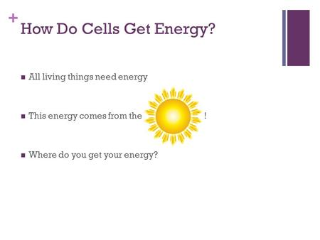 How Do Cells Get Energy? All living things need energy