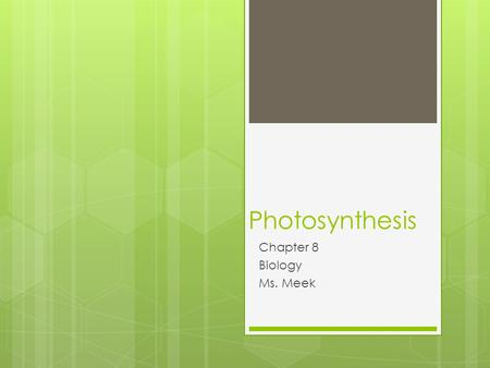 Photosynthesis Chapter 8 Biology Ms. Meek. Hook  If all the plants in the world died would we still be able to live?  Silently  Write down your thoughts.