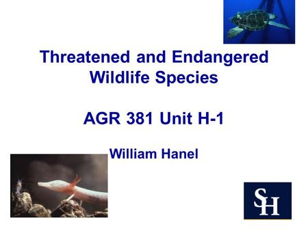 Threatened and Endangered Wildlife Species AGR 381 Unit H-1 William Hanel.