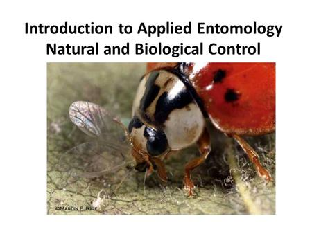 Introduction to Applied Entomology Natural and Biological Control.