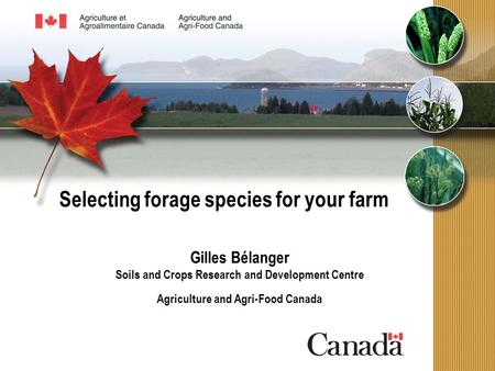 Selecting forage species for your farm Gilles Bélanger Soils and Crops Research and Development Centre Agriculture and Agri-Food Canada.