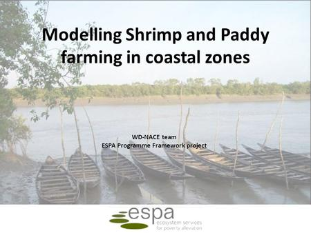 Modelling Shrimp and Paddy farming in coastal zones WD-NACE team ESPA Programme Framework project.
