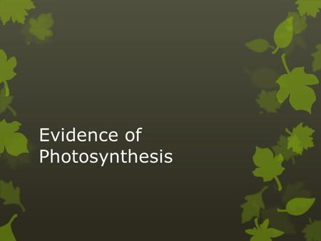 Evidence of Photosynthesis. Background Information  Photosynthesis is the process during which a plant's chlorophyll traps light energy and sugars are.