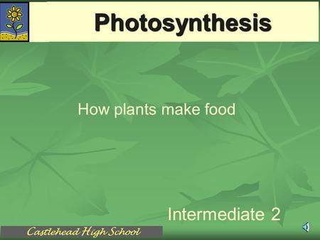 C astlehead H igh S chool Photosynthesis Intermediate 2 How plants make food.