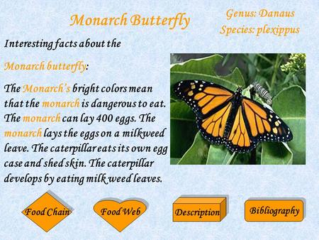 Monarch Butterfly Genus: Danaus Species: plexippus Interesting facts about the Monarch butterfly: The Monarch's bright colors mean that the monarch is.