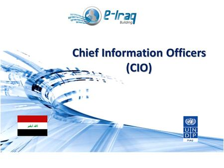 1 MODULE 2 Strategic and Operational Management in Public Sector Chief Information Officers (CIO)