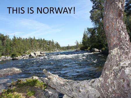 THIS IS NORWAY!. Outdoor activities Weather and landscape – Snow – Summer and 30 degrees – Mountains – Agriculture landscape.