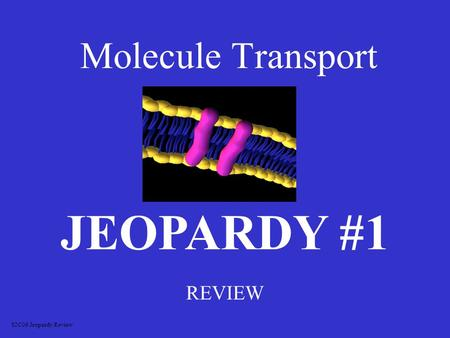 Molecule Transport REVIEW JEOPARDY #1 S2C06 Jeopardy Review.