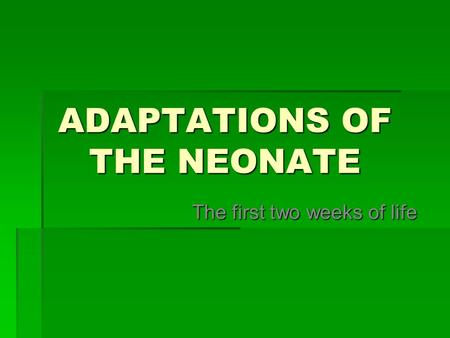 ADAPTATIONS OF THE NEONATE The first two weeks of life.