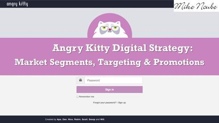 Angry Kitty Digital Strategy: Market Segments, Targeting & Promotions.