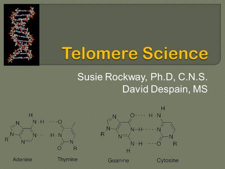 Susie Rockway, Ph.D, C.N.S. David Despain, MS.  Define Telomeres  What are the issues?  Provide overview of key epidemiological studies associating.