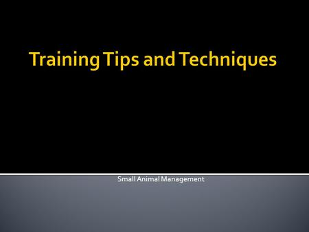Small Animal Management.  Explain the difference between positive and negative reinforcement.  Explain how to use positive reinforcement when training.