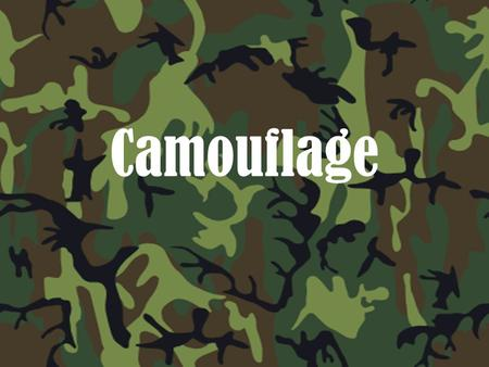 Camouflage. *Animals and people hide things for various reasons. *Animals in nature hide their young to protect them from predators. *Pirates hide stolen.