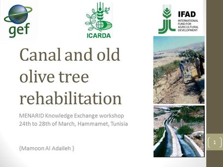 Canal and old olive tree rehabilitation MENARID Knowledge Exchange workshop 24th to 28th of March, Hammamet, Tunisia {Mamoon Al Adaileh } 1.