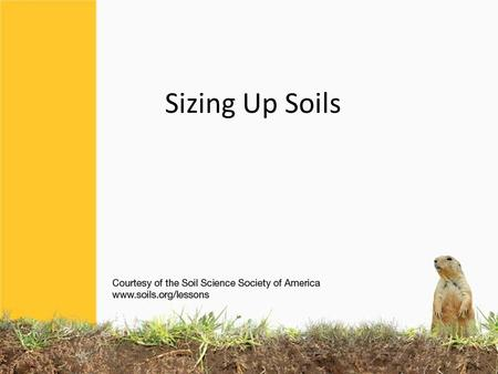 Sizing Up Soils. SOIL has different TEXTURES Each type of SOIL you touch feels different… If you have ever made a mud pie or sandcastle, you know: BECAUSE.