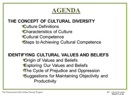AGENDA THE CONCEPT OF CULTURAL DIVERSITY Culture Definitions