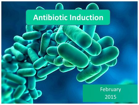 Antibiotic Induction February 2015.