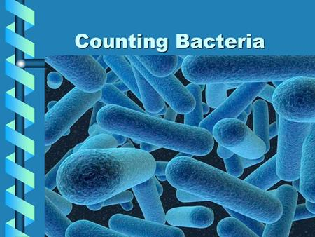 Counting Bacteria.