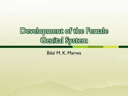 Development of the Female Genital System