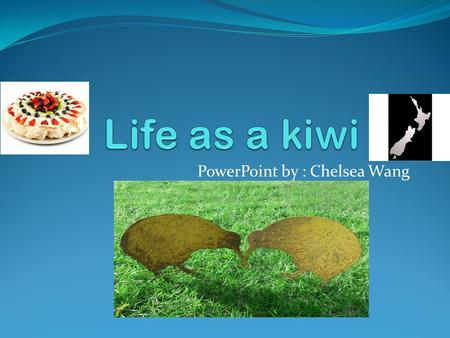 PowerPoint by : Chelsea Wang. Hello! My name is Chelsea, and I am going to tell you what makes me a kiwi.